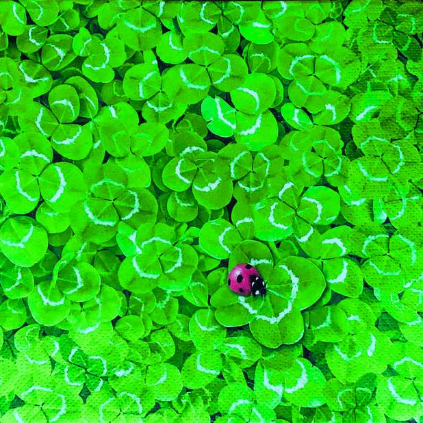 Servietter kløver, Bredde 33 cm, Grønn