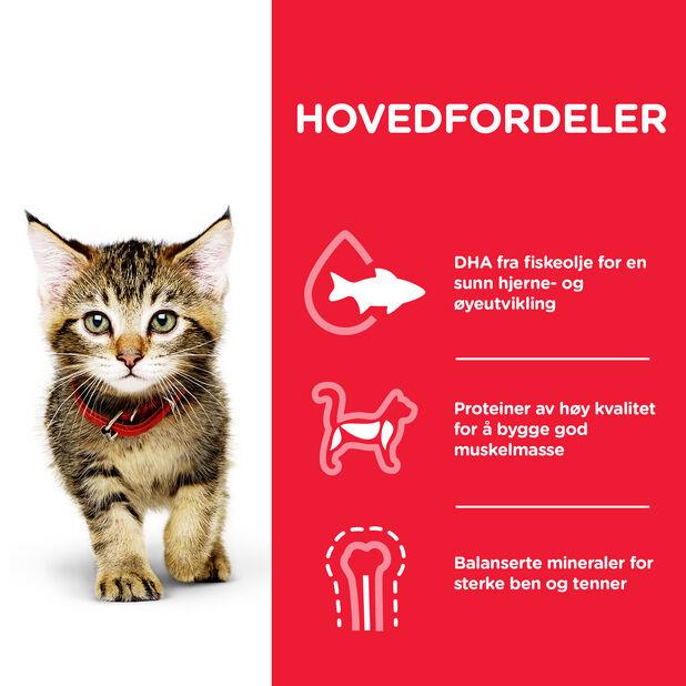 Hill´s SP Kitten kattungefôr Kylling, 1.5 kg
