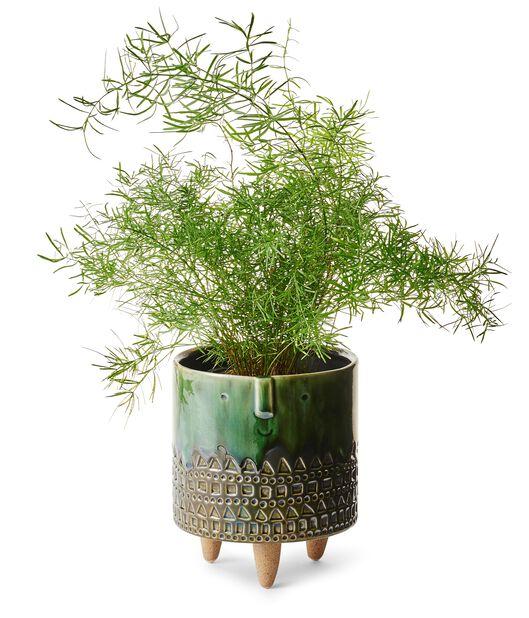Potte på ben Wille, Ø15 cm, Grønn