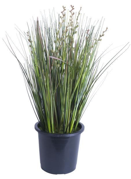 Gress i potte H 36 cm, mørkegrønn, kunstig