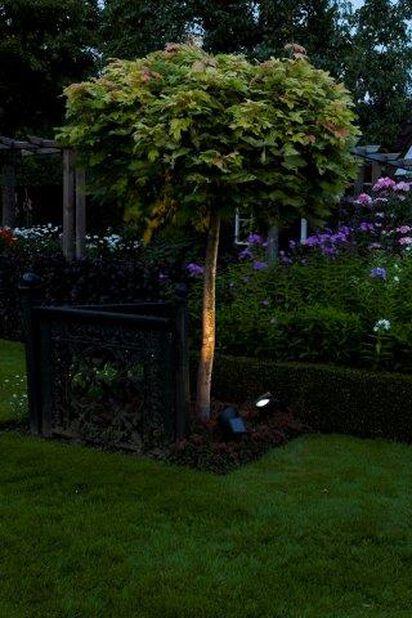 Solcelledrevet lysarmatur Lazise, Høyde 35 cm, Svart