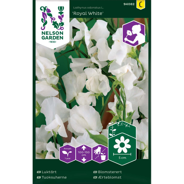 Blomsterert 'Royal White', Flerfarget