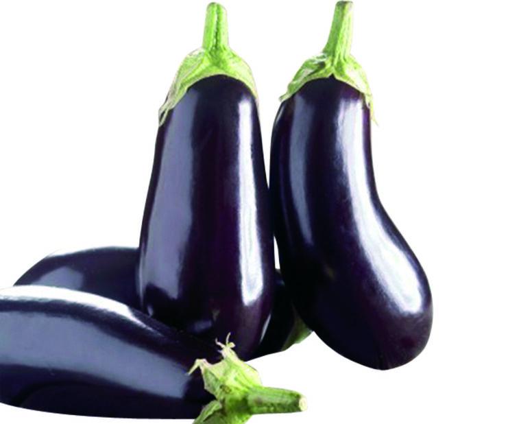 Aubergine 'Oblong purple', Ø12 cm, Lilla