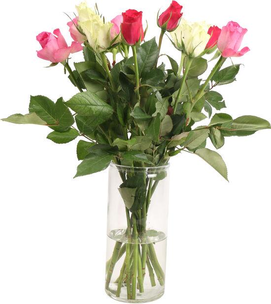 Roser 12pk, Høyde 40 cm, Flerfarget