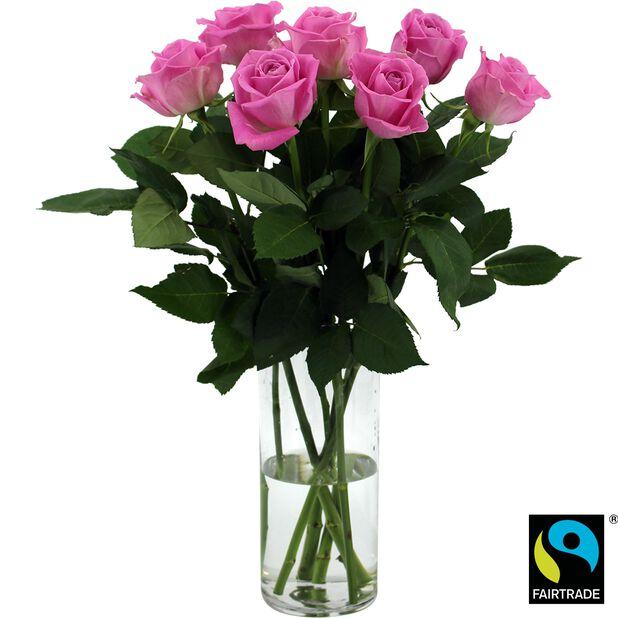 Roser 7pk, Høyde 50 cm, Rosa