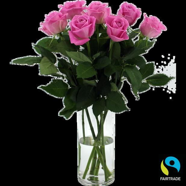 Roser , Høyde 50 cm, Rosa