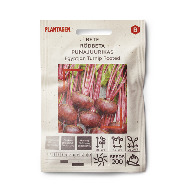 Bete 'Egyptian Turnip Rooted'