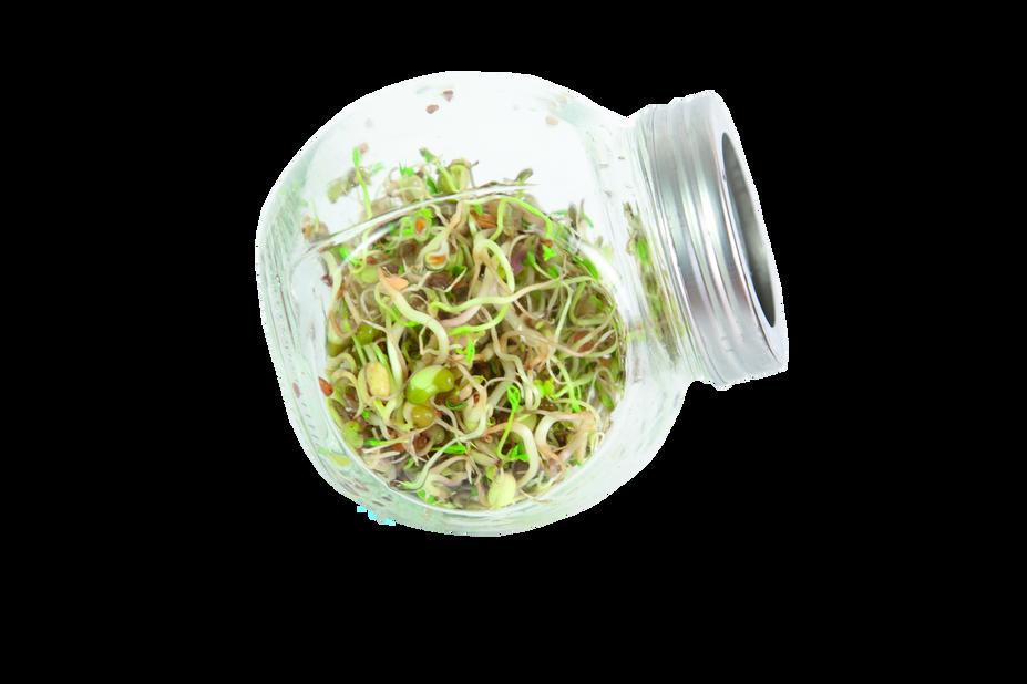 Spirekrukke Salatblanding, Høyde 11 cm, Flerfarget