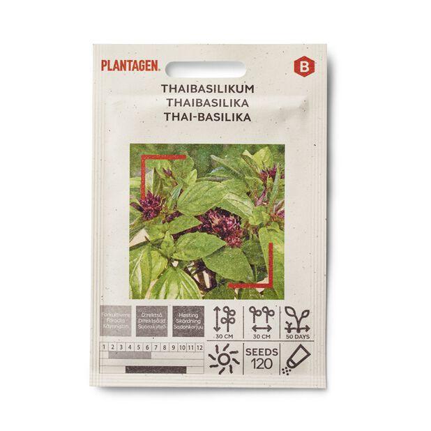 Thaibasilikum