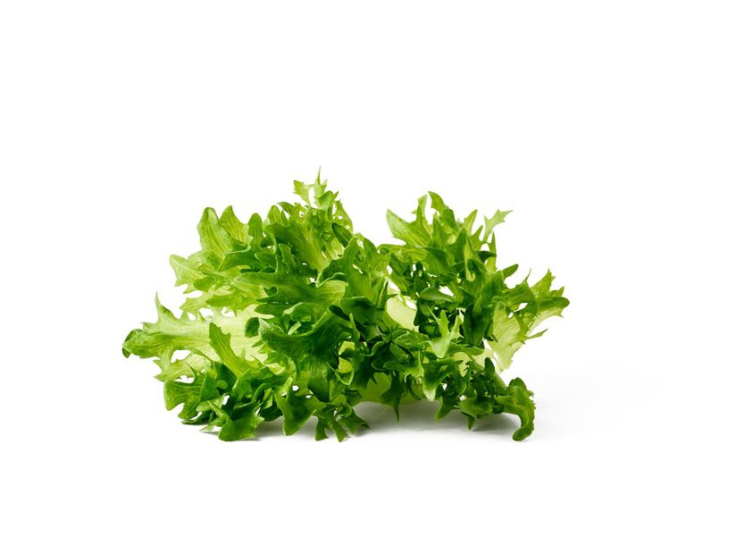 Plukksalat, Ø12 cm, Grønn