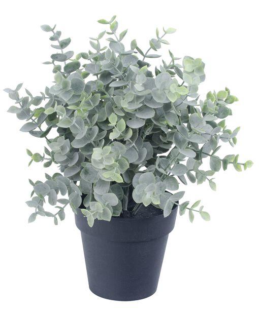 Eukalyptus kunstig, Høyde 25 cm, Grønn