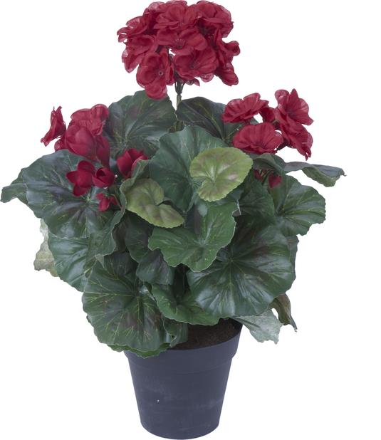 Pelargonia kunstig, Høyde 32 cm, Rød