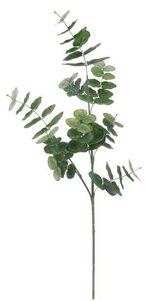 Eukalyptuskvist kunstig, Høyde 75 cm, Grønn