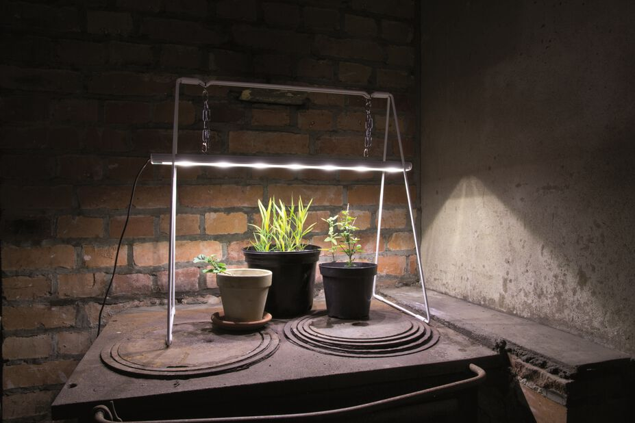 Vekstlampe grow light duo