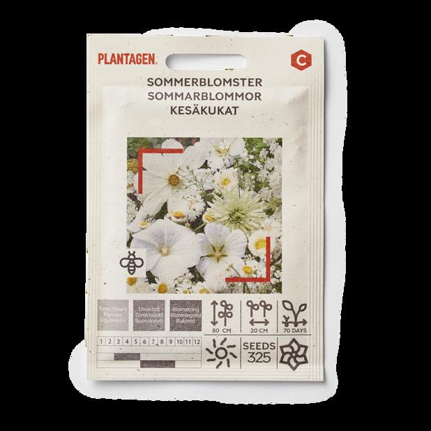 Sommerblomster, hvite nyanser