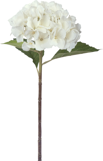 Hortensia snitt H51 cm, hvit, kunstig
