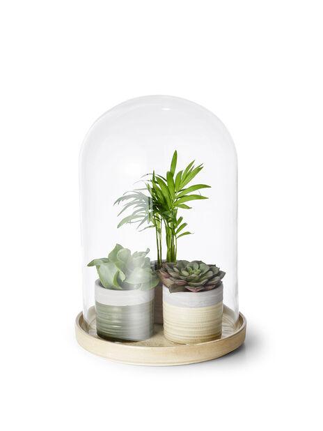 Kuppel i glass, Ø20 cm, Transparent