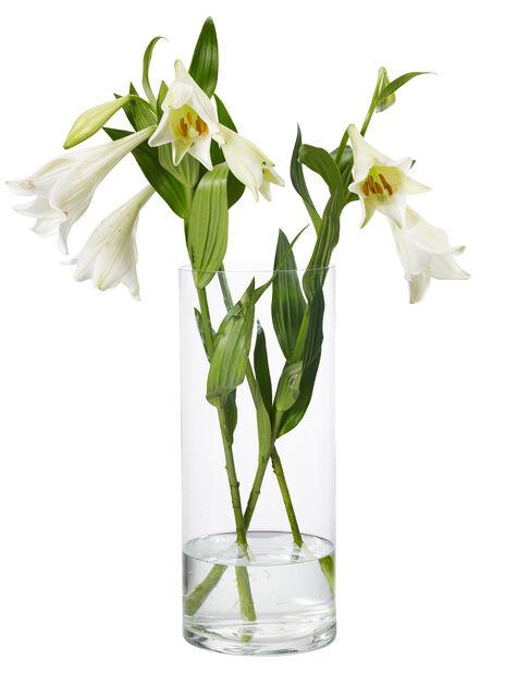 Vase Jennifer, Høyde 30 cm, Transparent