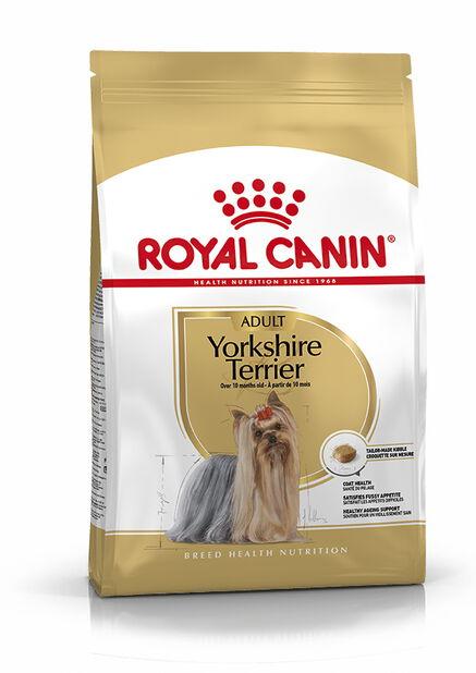Yorkshire Terrier Adult 1,5kg, 1.5 kg