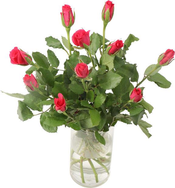 Roser 10pk, Høyde 40 cm, Flere farger