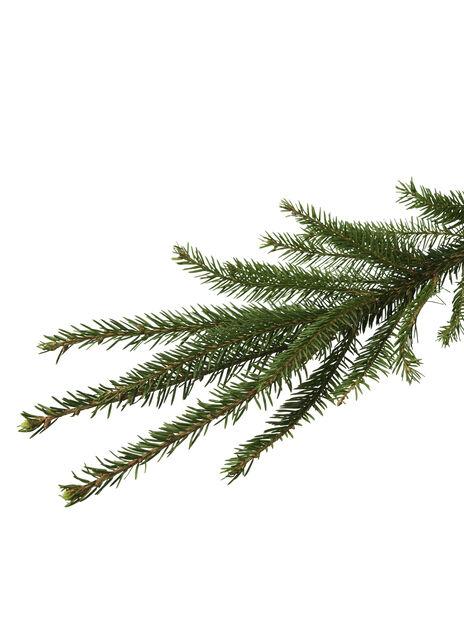 Utestående Juletre 200-2 Høyde 250 cm Grønn | Plantasjen FD-94
