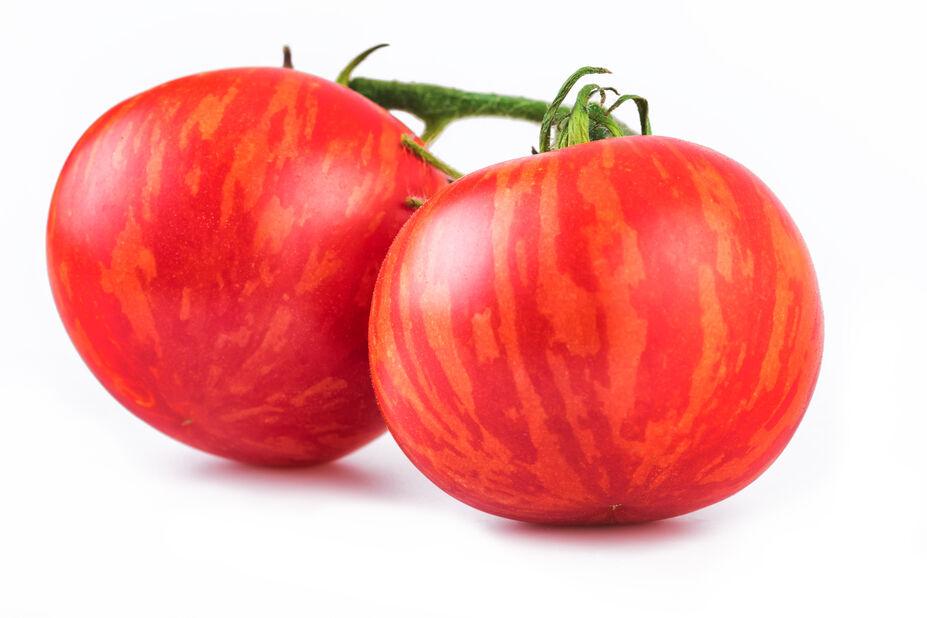 Tomat 'Tigerella', Ø10.5 cm, Rød