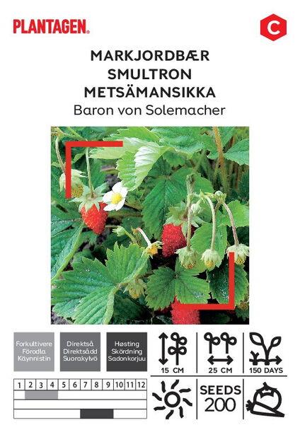 Markjordbær 'Baron von Solemacher'