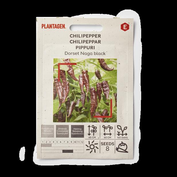 Chilipepper 'Dorset Naga Svart'