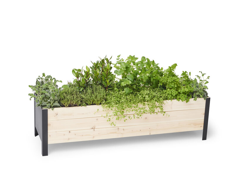 Plantekasse Cultura 118x36x32 cm