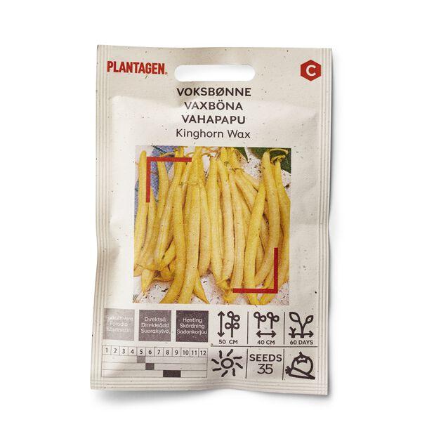 Voksbønne 'Kinghorn Wax'