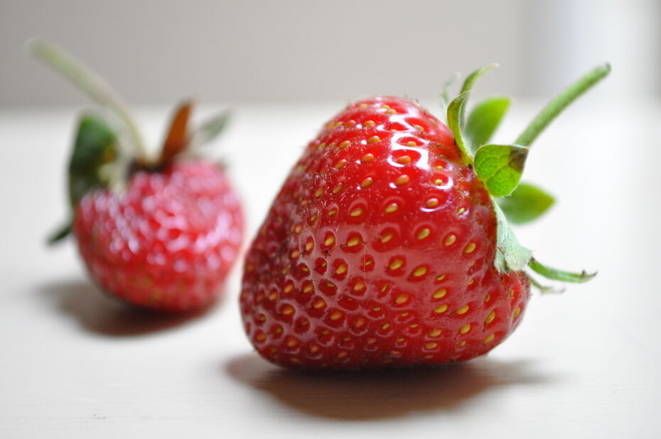 Jordbær 'Toscana'