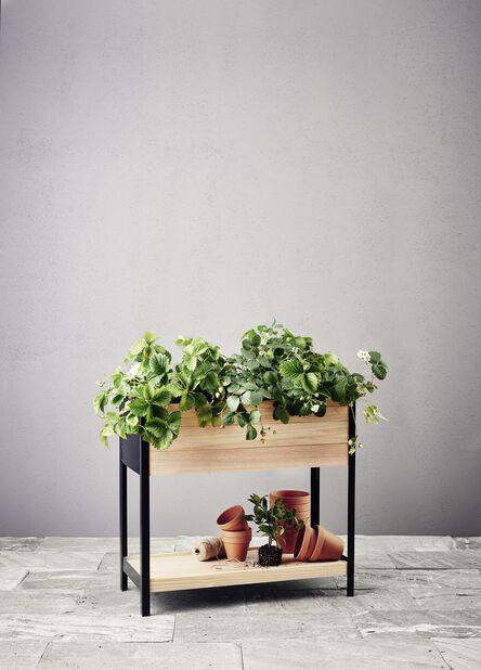 Plantekasse Cultura, Lengde 78 cm, Tre