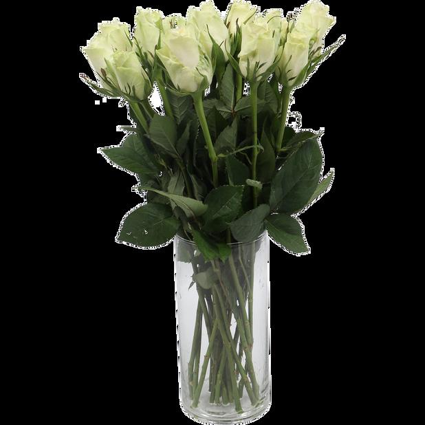 Roser, Høyde 40 cm, Flere farger