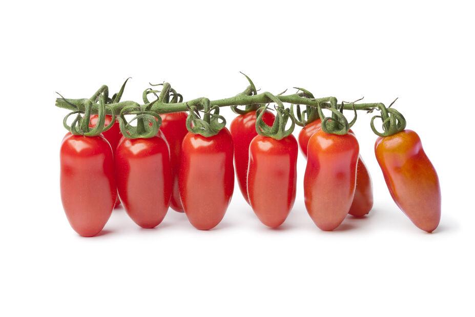 Tomat 'Ribs' , Ø10.5 cm, Rød