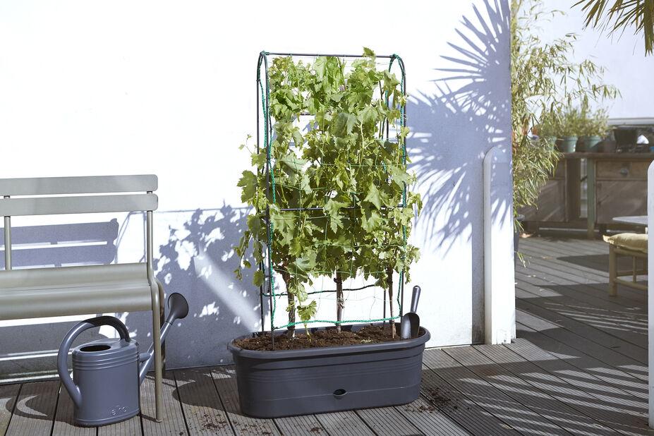 Grønnsaksveggen ELHO Green Basics, Lengde 80 cm, Svart