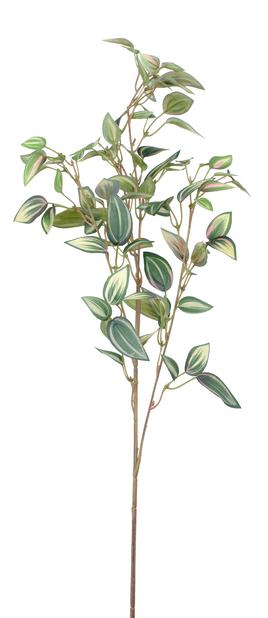 Zebrina kunstig kvist