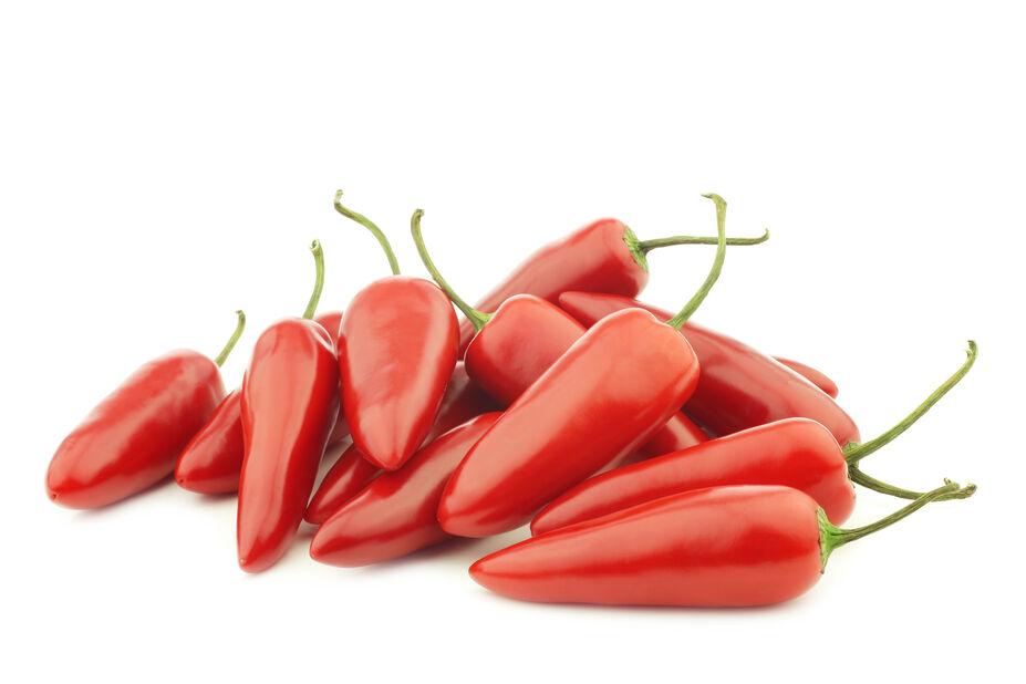 Chili 'Jalapeño' , Ø10.5 cm, Rød