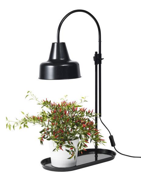 Bordlampe sort