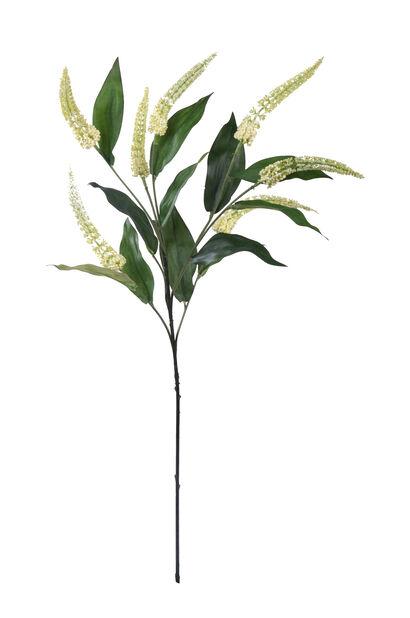 Cascara H 72 cm, hvit, kunstig