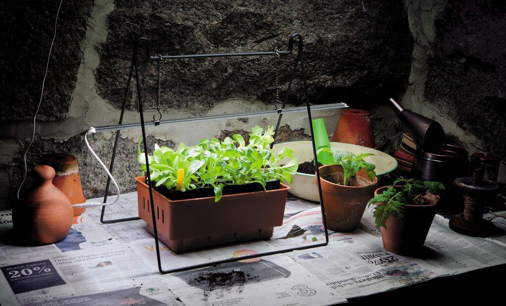 Plantelys LED No.1 60cm 15W med adapter, Lengde 60 cm