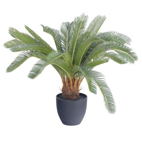 Konglepalme kunstig , Høyde 60 cm, Grønn