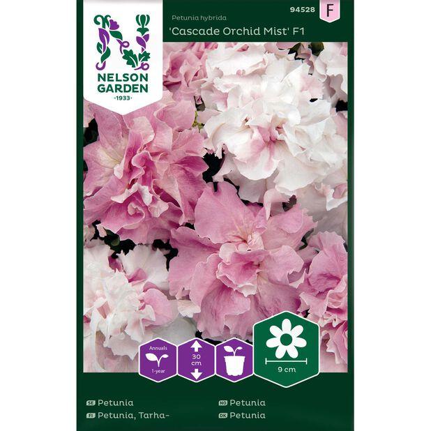 Petunia 'Cascade Orchid Mist' F1, Flerfarget