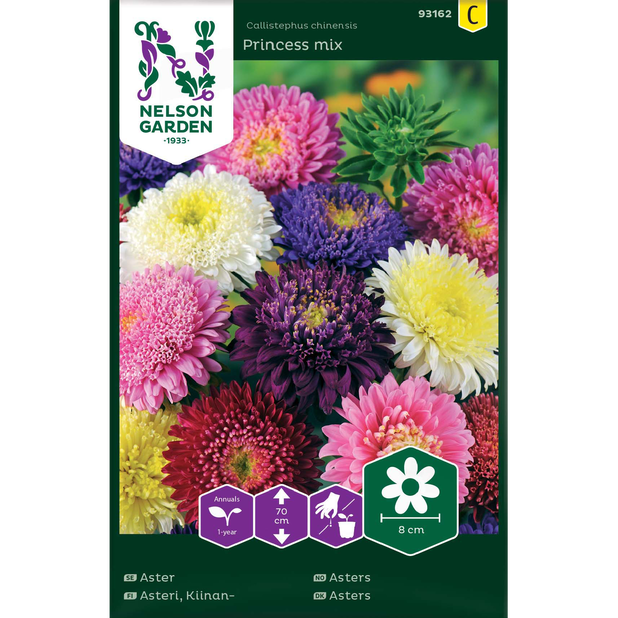 Asters 'Princess Mix', Flerfarget