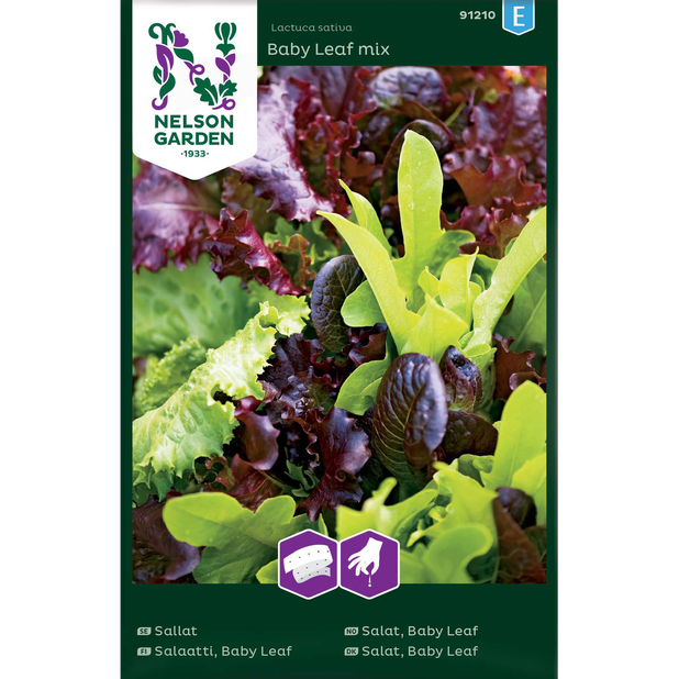 Salat 'Baby Leaf Mix', Flerfarget