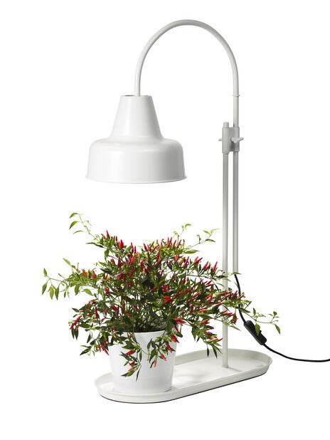 Bordlampe hvit