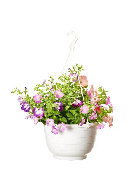 Sommerblomster miks  32 cm