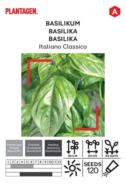 Basilikum 'Italiano Classico'
