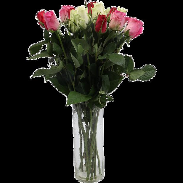 Roser , Høyde 50 cm, Flere farger