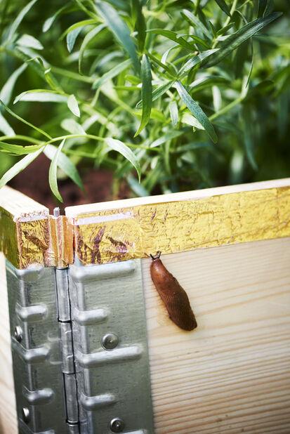 Sneglestopper til plantekasse, Lengde 5 m, Kobber