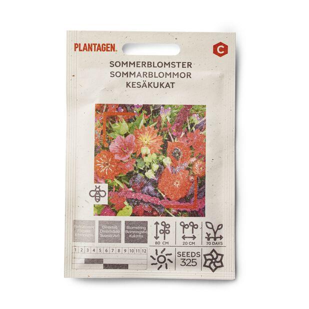 Sommerblomster, røde nyanser